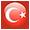Türk Bayrağı (45)