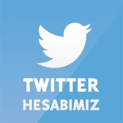 twitter-site1x250